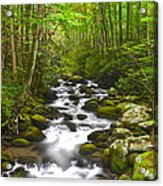 Smoky Mountain Stream Acrylic Print by Frozen in Time Fine Art Photography