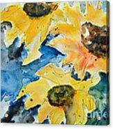 Sunflowers Acrylic Print by Ismeta Gruenwald