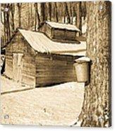 The Old Sugar Shack Acrylic Print by Edward Fielding