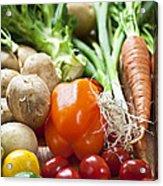 Vegetables Acrylic Print by Elena Elisseeva