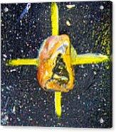 Barack Obama Star Acrylic Print by Augusta Stylianou
