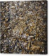 Rocks In Water Acrylic Print by Elena Elisseeva