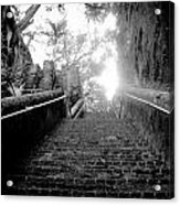The Queen's Staircase Acrylic Print by Damion Lawrence