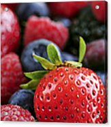 Assorted Fresh Berries Acrylic Print by Elena Elisseeva