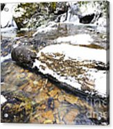 White Oak Run In Winter Acrylic Print by Thomas R Fletcher