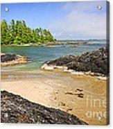 Coast Of Pacific Ocean On Vancouver Island Acrylic Print by Elena Elisseeva
