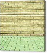 Brick Wall Acrylic Print by Tom Gowanlock