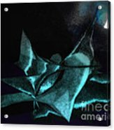 A Dream - Flying To The Moon Acrylic Print by Gerlinde Keating - Keating Associates Inc