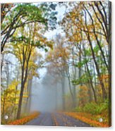 A Foggy Drive Into Autumn - Blue Ridge Parkway Acrylic Print by Dan Carmichael