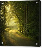 A Path To The Light Acrylic Print by Evelina Kremsdorf