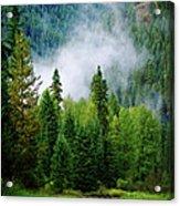A River Runs Through It  Acrylic Print by Joseph Noonan