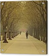 A Royal Stroll Acrylic Print by Aaron S Bedell