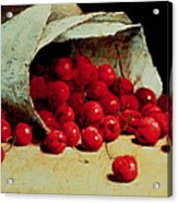 A Spilled Bag Of Cherries Acrylic Print by Antoine Vollon