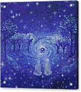 A Star Night Acrylic Print by Ashleigh Dyan Bayer