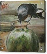 A Thirsty Crow Acrylic Print by Prasenjit Dhar