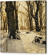 A Wooded Winter Landscape With Deer Acrylic Print by Peder Monsted