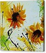 Abstract Sunflowers 2 Acrylic Print by Ismeta Gruenwald