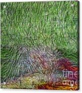 Abstraction Of Life Acrylic Print by Deborah Benoit