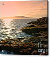 Acadia National Park Acrylic Print by Olivier Le Queinec