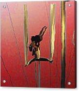 Acrobatic Aerial Artistry1 Acrylic Print by Anne Mott
