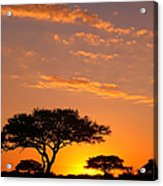African Sunset Acrylic Print by Sebastian Musial
