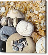 Agates Rocks Art Prints Petrified Wood Fossils Acrylic Print by Baslee Troutman