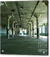 Alcatraz 5 Acrylic Print by Micah May