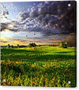 All I Need Acrylic Print by Phil Koch