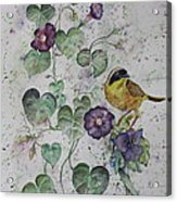Almost Botanical Acrylic Print by Patsy Sharpe