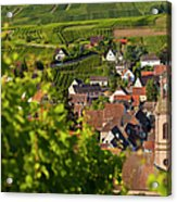 Alsace Morning Acrylic Print by Brian Jannsen