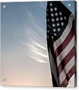 America Acrylic Print by Peter Tellone