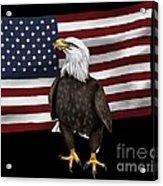 American Eagle Acrylic Print by Karen Sheltrown