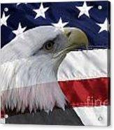American Flag And Bald Eagle Acrylic Print by Jill Lang