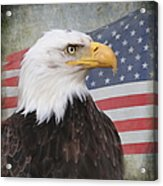 American Pride Acrylic Print by Angie Vogel