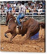 American Rodeo Female Barrel Racer White Blaze Chestnut Horse IIi Acrylic Print by Sally Rockefeller