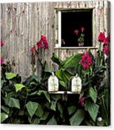 Amish Barn Acrylic Print by Diane Diederich