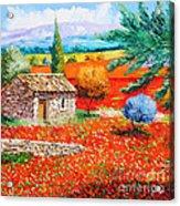 Among The Poppies Acrylic Print by Jean-Marc Janiaczyk