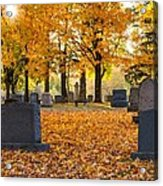 Forest Hill Autumn Light  Acrylic Print by Mary Amerman
