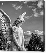Angel At The Heredia General Cemetery Acrylic Print by Andres Leon
