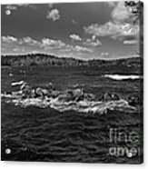 Angry Acrylic Print by Skip Willits