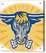 Angry Texas Longhorn Bull Head Front Acrylic Print by Aloysius Patrimonio