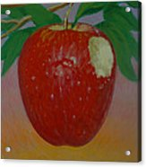 Apple 3 In A Series Of 3 Acrylic Print by Don Young