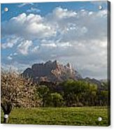 April Showers And New Green Of Spring Rockville Utah Acrylic Print by Robert Ford