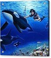 Aquaria's Orcas Acrylic Print by Stu Shepherd