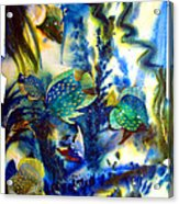 Aquarium Archived Work  Acrylic Print by Charlie Spear