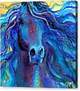 Arabian Horse #3  Acrylic Print by Svetlana Novikova