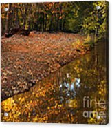 Arizona Autumn Reflections Acrylic Print by Mike  Dawson