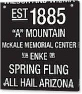 Arizona College Town Wall Art Acrylic Print by Replay Photos