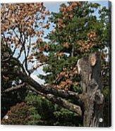 Arlington National Cemetery - 121242 Acrylic Print by DC Photographer