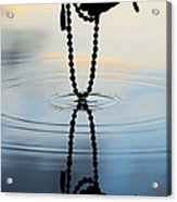 As Above So Below Acrylic Print by Tim Gainey